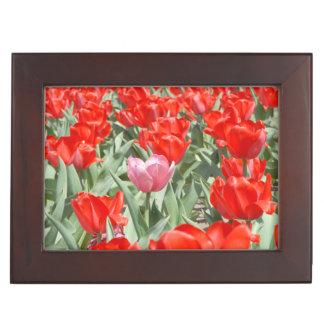 USA, Kansas, Red Tulips With One Pink Tulip Keepsake Box