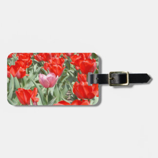 USA, Kansas, Red Tulips With One Pink Tulip Luggage Tag