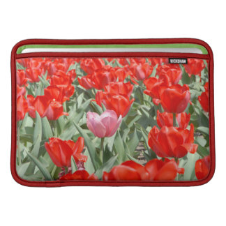 USA, Kansas, Red Tulips With One Pink Tulip Sleeve For MacBook Air