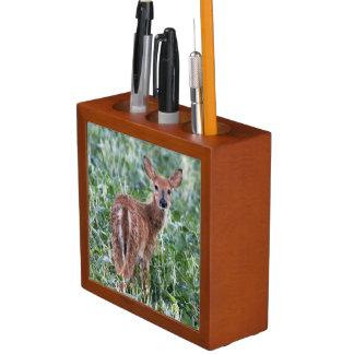 USA, Kansas, Small Whitetail Deer Desk Organiser
