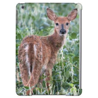 USA, Kansas, Small Whitetail Deer iPad Air Case