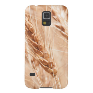USA, Kansas, Wheat At Harvest Time Case For Galaxy S5