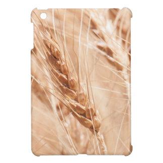 USA, Kansas, Wheat At Harvest Time iPad Mini Cases