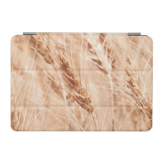USA, Kansas, Wheat At Harvest Time iPad Mini Cover