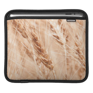 USA, Kansas, Wheat At Harvest Time iPad Sleeve