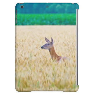 USA, Kansas, White Tail Doe Crossing Wheat