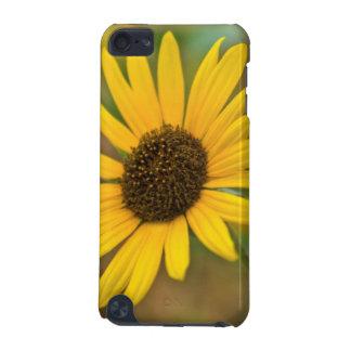 USA, Kansas. Wild Sunflower iPod Touch 5G Case