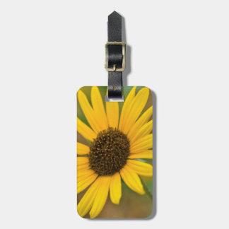 USA, Kansas. Wild Sunflower Luggage Tag