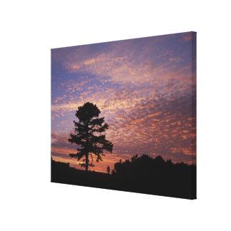 USA, Kentucky, Cumberland Gap National Gallery Wrap Canvas