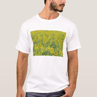 USA, Kentucky, Fayette County Pattern in field T-Shirt