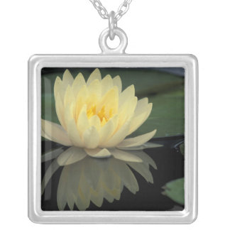USA, Kentucky, Louisville Domestic water lily, Silver Plated Necklace