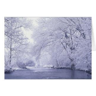 USA, Kentucky, Louisville. Snow covered Card