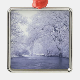 USA, Kentucky, Louisville. Snow covered Christmas Ornament