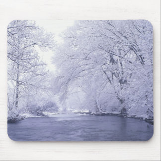 USA, Kentucky, Louisville. Snow covered Mouse Mat