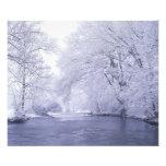 USA, Kentucky, Louisville. Snow covered Photo Art