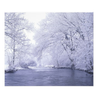 USA, Kentucky, Louisville. Snow covered Photo Print