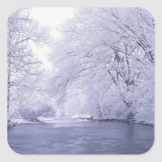 USA, Kentucky, Louisville. Snow covered Square Sticker