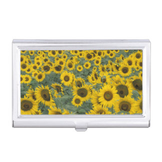 USA, Kentucky Pattern in field of cultivated Business Card Holder