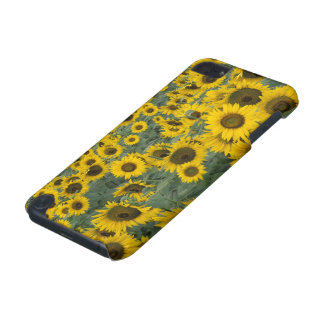 USA, Kentucky Pattern in field of cultivated iPod Touch (5th Generation) Case