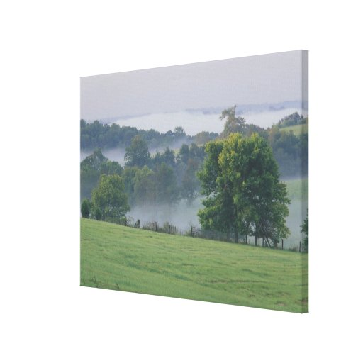 USA, Kentucky. Rolling hills of the Bluegrass Stretched Canvas Print