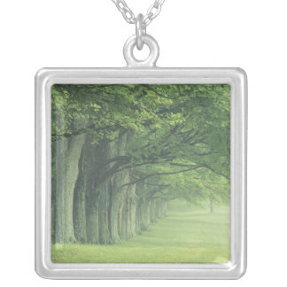 USA, Kentucky. Row of trees in spring Silver Plated Necklace
