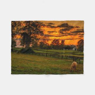 USA, Lexington, Kentucky. Lone horse at sunset 1 Fleece Blanket