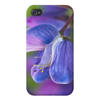 USA, Maine, Acadia National Park. Close-up of iPhone 4 Cover