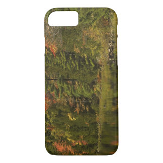 USA; Maine; Acadia NP. Fall reflections at 2 iPhone 8/7 Case
