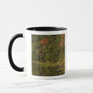 USA; Maine; Acadia NP. Fall reflections at 2 Mug