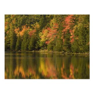 USA; Maine; Acadia NP. Fall reflections at Postcard