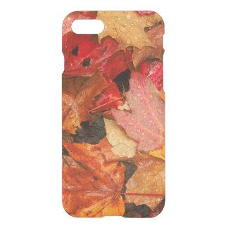 USA, Maine. Autumn maple leaves iPhone 8/7 Case