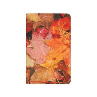 USA, Maine. Autumn maple leaves Journal