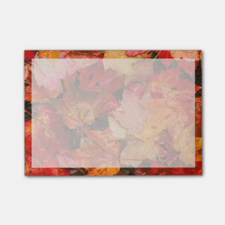 USA, Maine. Autumn maple leaves Post-it® Notes
