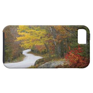 USA, Maine, Camden. Road leading through Camden iPhone 5 Cases