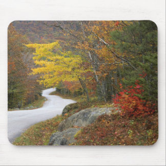 USA, Maine, Camden. Road leading through Camden Mouse Pad