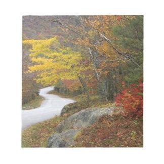 USA, Maine, Camden. Road leading through Camden Notepad
