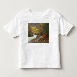 USA, Maine, Camden. Road leading through Camden Toddler T-Shirt