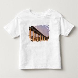 USA, Maryland, Annapolis. Severn River bidge, Toddler T-Shirt
