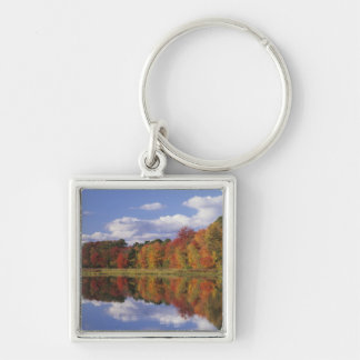 USA, Massachusetts, Acton. Reflection of autumn Key Ring