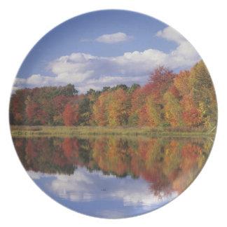 USA, Massachusetts, Acton. Reflection of autumn Plates
