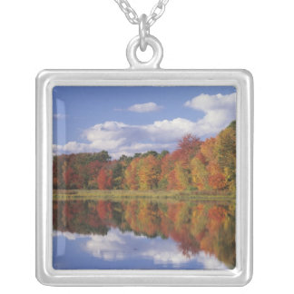 USA, Massachusetts, Acton. Reflection of autumn Silver Plated Necklace