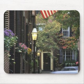 USA, Massachusetts, Boston, Beacon Hill. Mouse Mat
