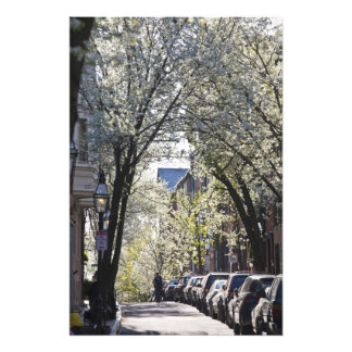 USA, Massachusetts, Boston, Beacon Hill. Photo Print
