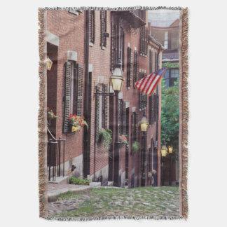 USA, Massachusetts, Boston, Houses Along Acorn Throw Blanket