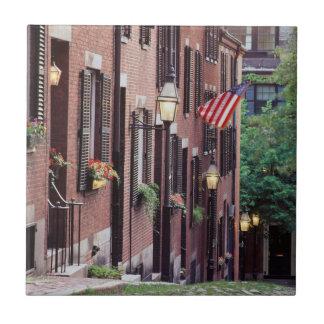 USA, Massachusetts, Boston, Houses Along Acorn Tile