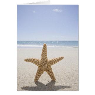 USA, Massachusetts, Cape Cod, Nantucket, close Greeting Card