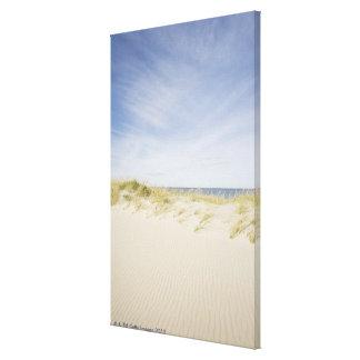 USA, Massachusetts, Cape Cod, Nantucket, sandy Canvas Print