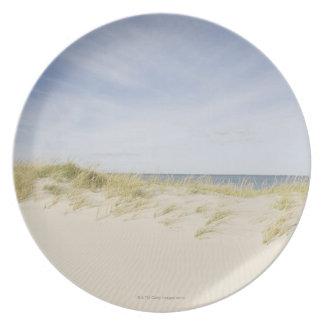 USA, Massachusetts, Cape Cod, Nantucket, sandy Plate