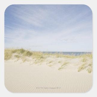 USA, Massachusetts, Cape Cod, Nantucket, sandy Square Sticker