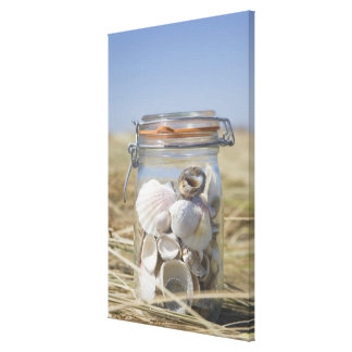 USA, Massachusetts, close up of shells in jar Canvas Print